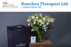 Bunches Florapost Ltd - Creating smiles across the UK