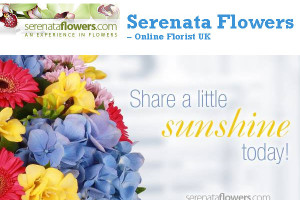 Serenata Flowers – Online Florist UK