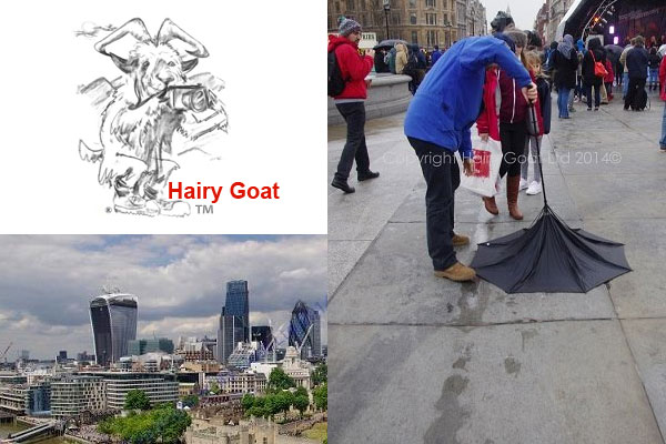 Hairy Goat photography