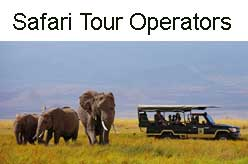Safari Tour Operators