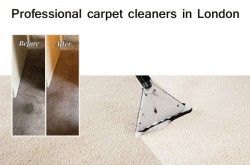 Professional Carpet Cleaning Companies in London