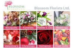 Blossom Florists Ltd