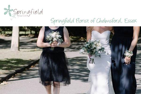 Springfield Florist - Chelmsford, Essex, CM2 0JA