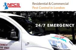 National Pest Control Services UK