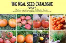 Real Seed Catalogue
