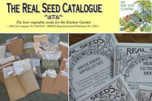 Real Seeds Company UK