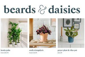 Beards & Daisies Plants UK