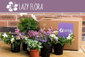 Lazy Flora Plant Subscriptions